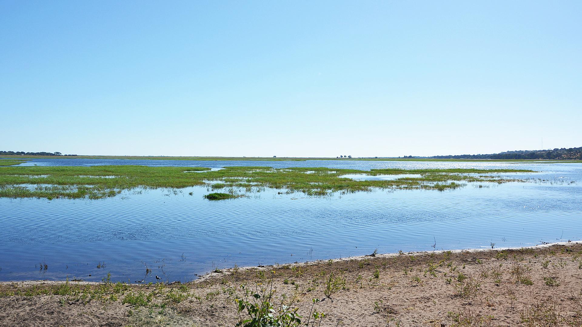 Im Chobe Nationalpark (Foto: Sabina Schneider)