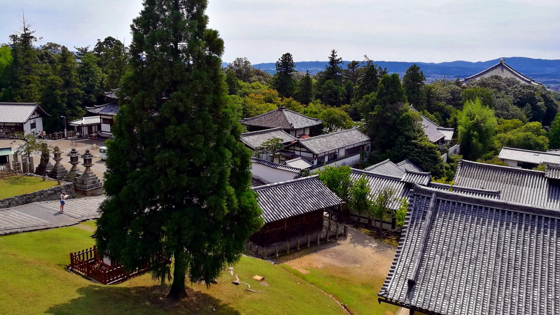 Aussicht Nara (Foto: Marina Hochholzner)