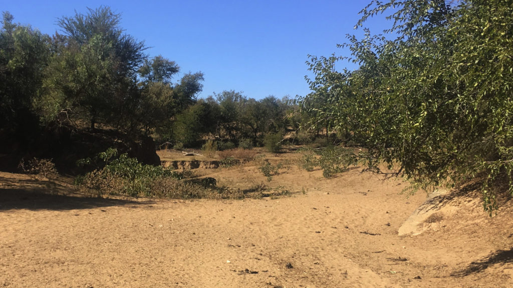 Farmlife Namibia (Foto: Sabina Schneider)