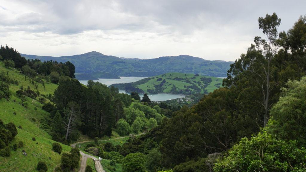Banks Peninsula Neuseeland (Foto: Sabina Schneider)