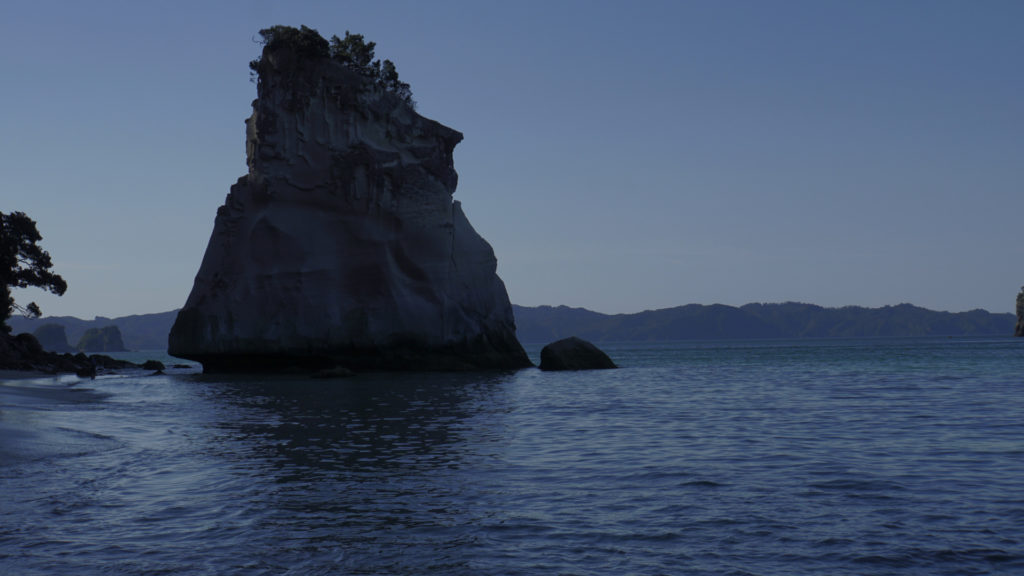 Coromandel Neuseeland (Foto: Sabina Schneider)