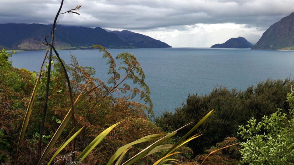 Walks an der Westküste Neuseelands (Foto: Sabina Schneider)