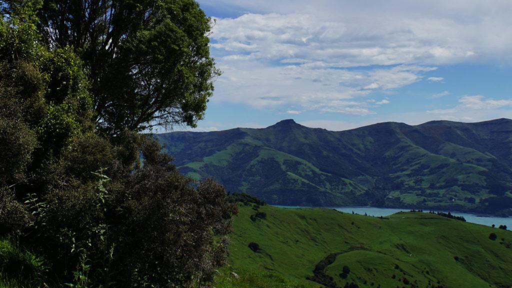 Banks Peninsula Akaroa (Foto: Sabina Schneider)